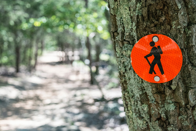 Manners for the Masses: How Not to Be a Jerky Jogger
